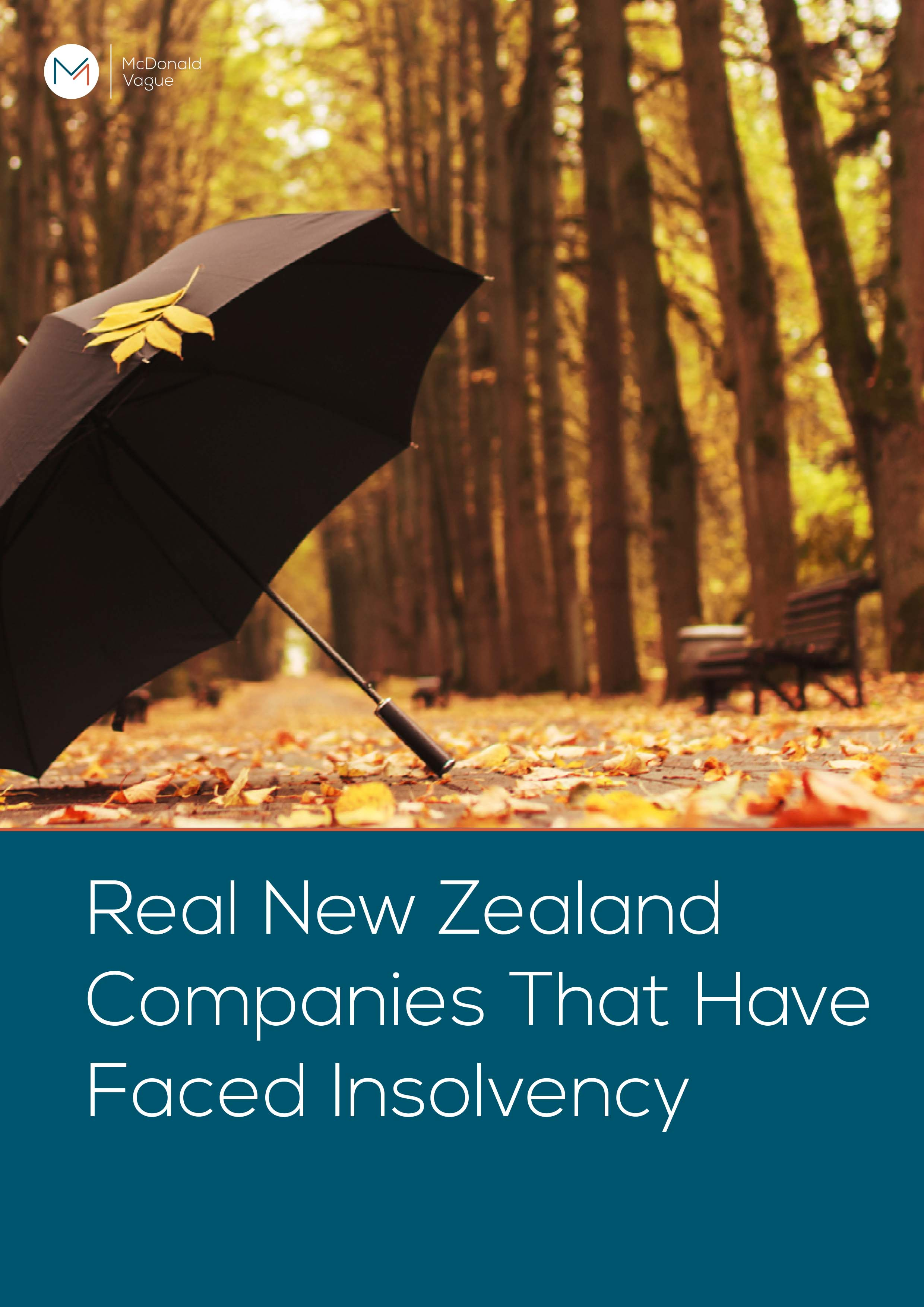 Real New Zealand Companies That Have Faced Insolvency